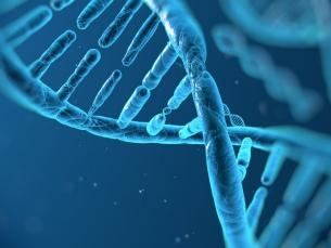Testes genéticos contra o câncer