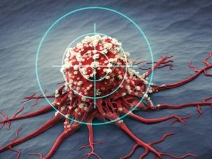 Terapia-Alvo: munição certeira contra o câncer