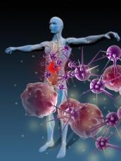 Imunoterapia do câncer: vitória no Nobel e para milhares de vidas