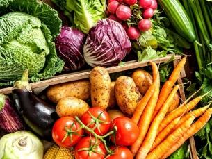 Não existem alimentos que comprovadamente previnem ou curam o câncer