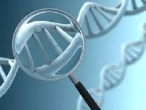Além da quimioterapia: conhecer DNA do tumor aumenta chances de cura do câncer