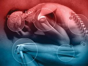 Dor deve ser tratada como doença, e não sintoma, diz especialista
