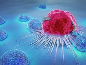 """Novo tratamento para linfoma funciona como um """"Cavalo de Troia"""""""
