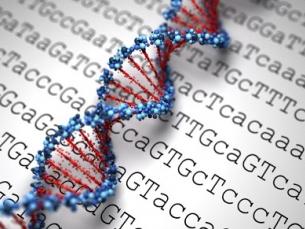 Teste genético: como saber se minha família tem câncer hereditário?